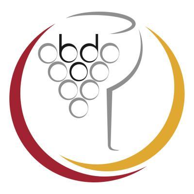 2016 BDO Logo Bild.jpg